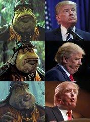 Boss Trump